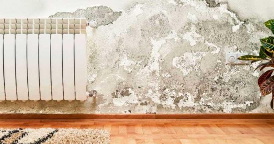 Cómo lijar una pared con humedad